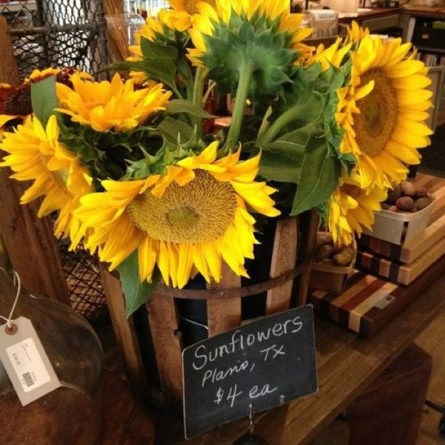 Sunflowers grown in Plano, TX.  Available at Patina Green Home and Market in McKinney, TX for $4.00 a stem!