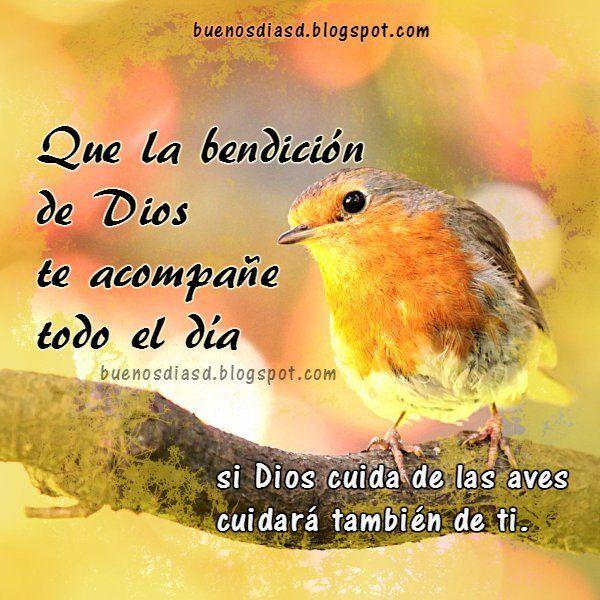 Imagen Buenos Dias Bendiciones Tarjeta Cristiana