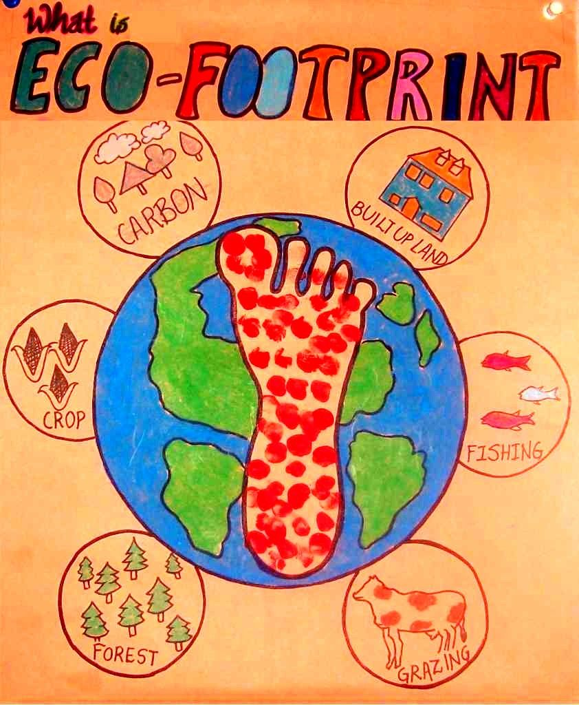 Images Components Of Ecological Footprint Google Search Hallbar Utveckling