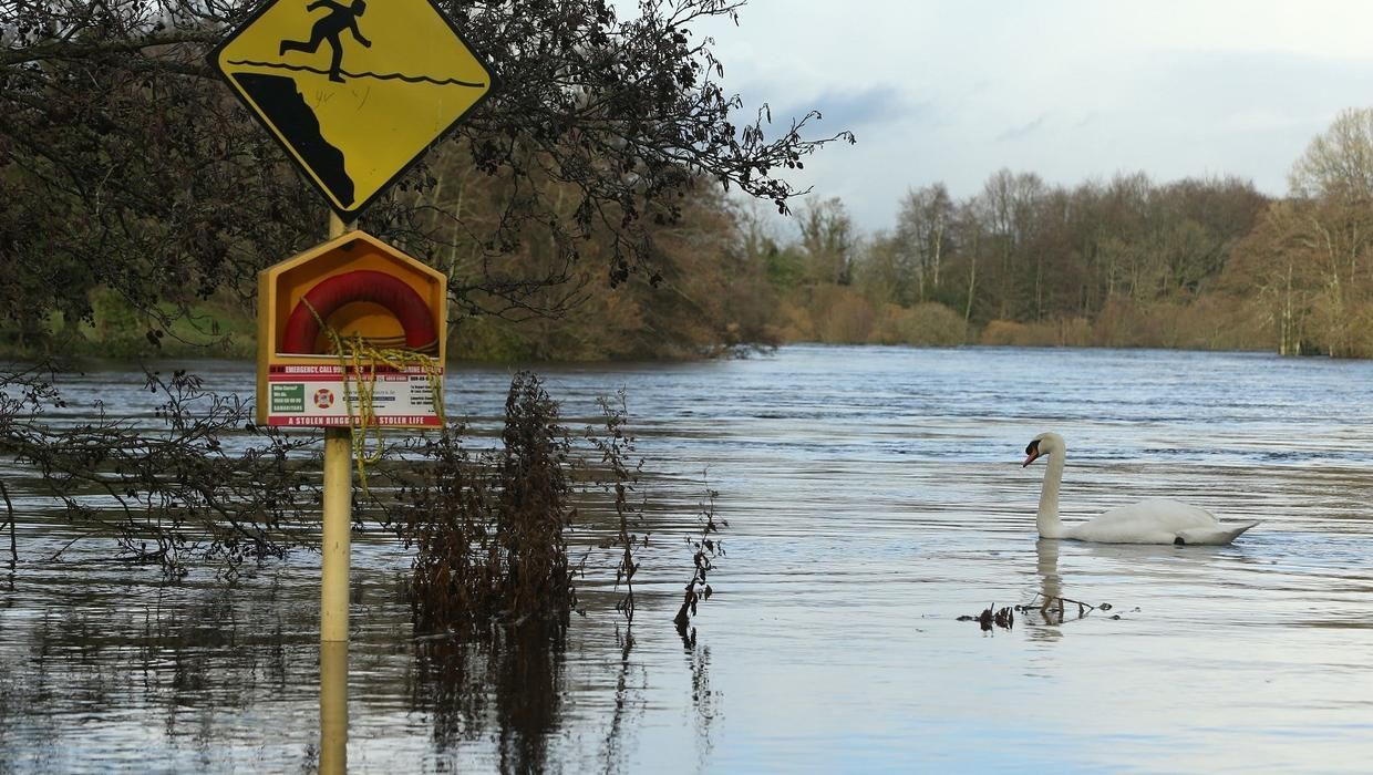 'Biblical' floods deal blow to business owners Flood