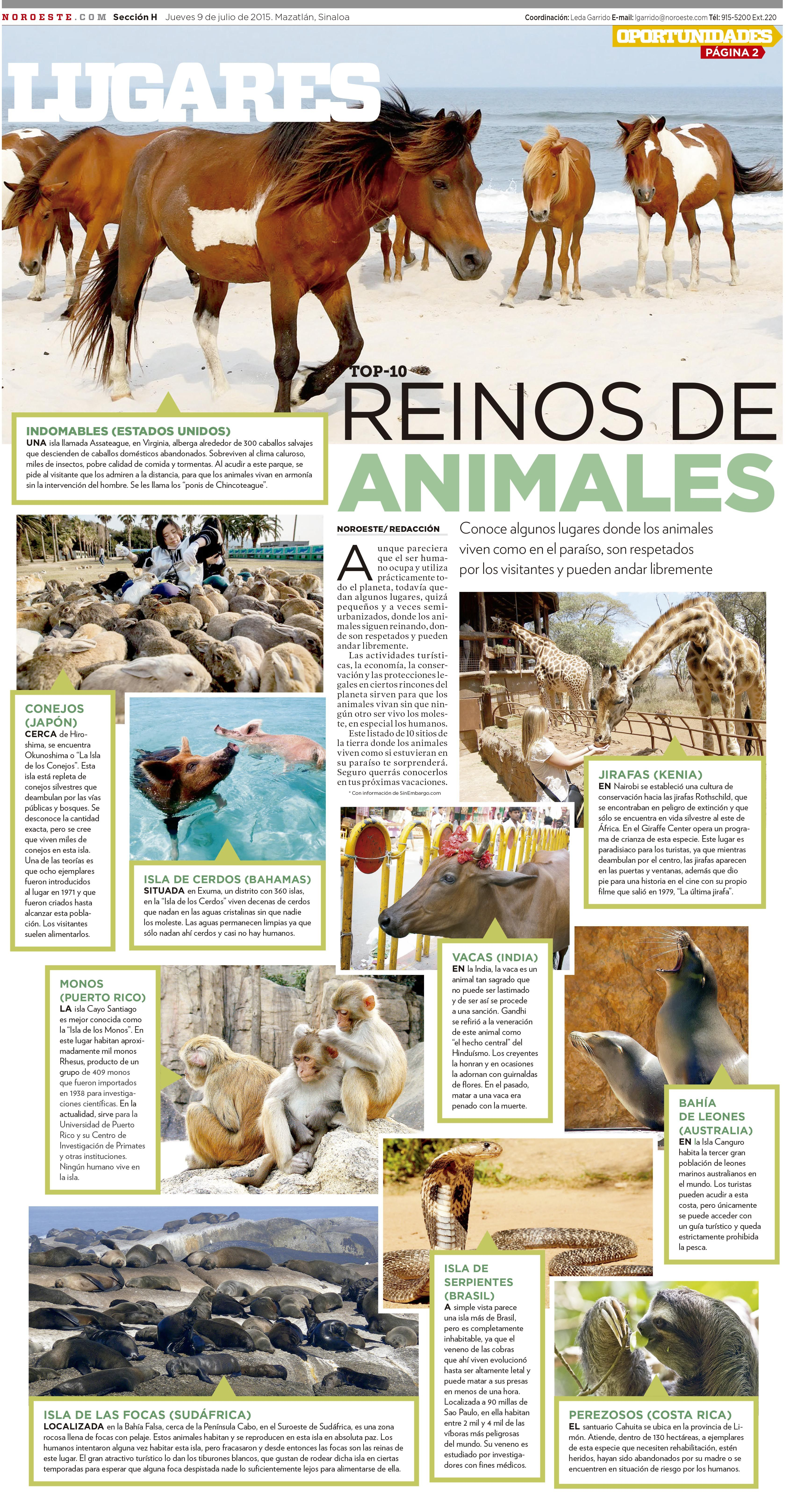 Paraísos Animales Newspaper Design Newspaper Layout Layout Design