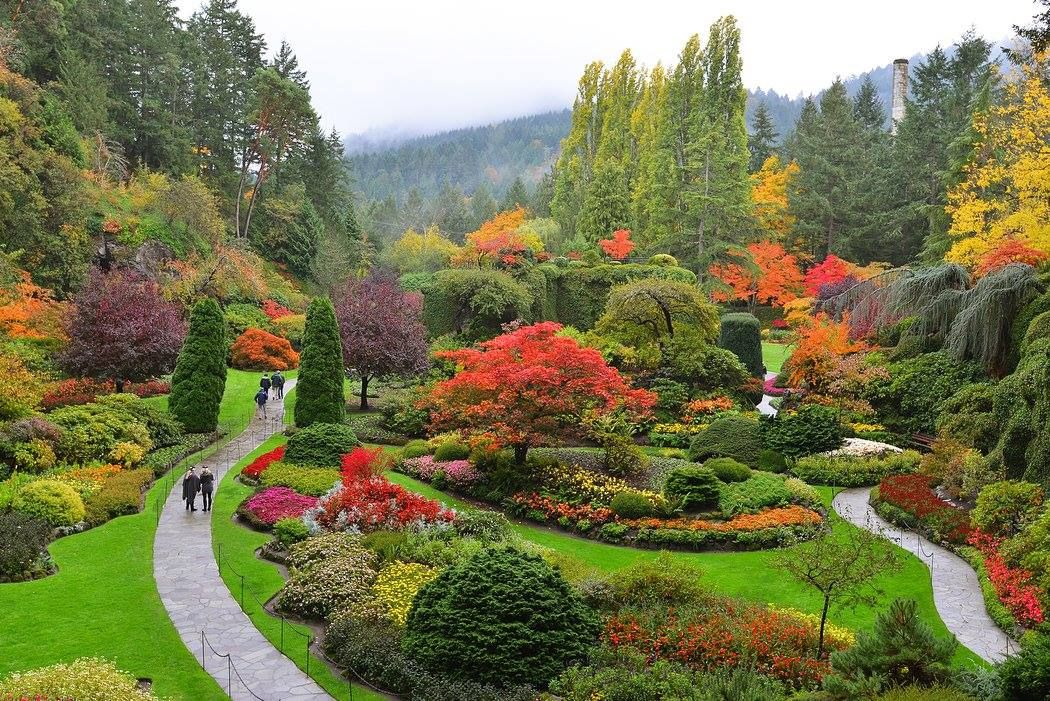 The Butchart Gardens #butchartgardens