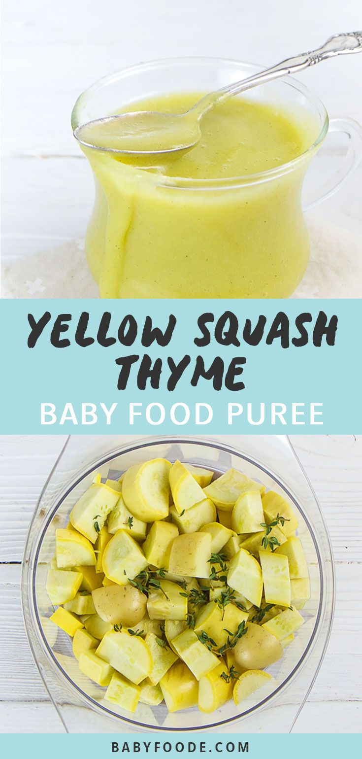 Yellow Squash + Thyme Baby Food Puree (6+M - Stage 1) - Baby Foode