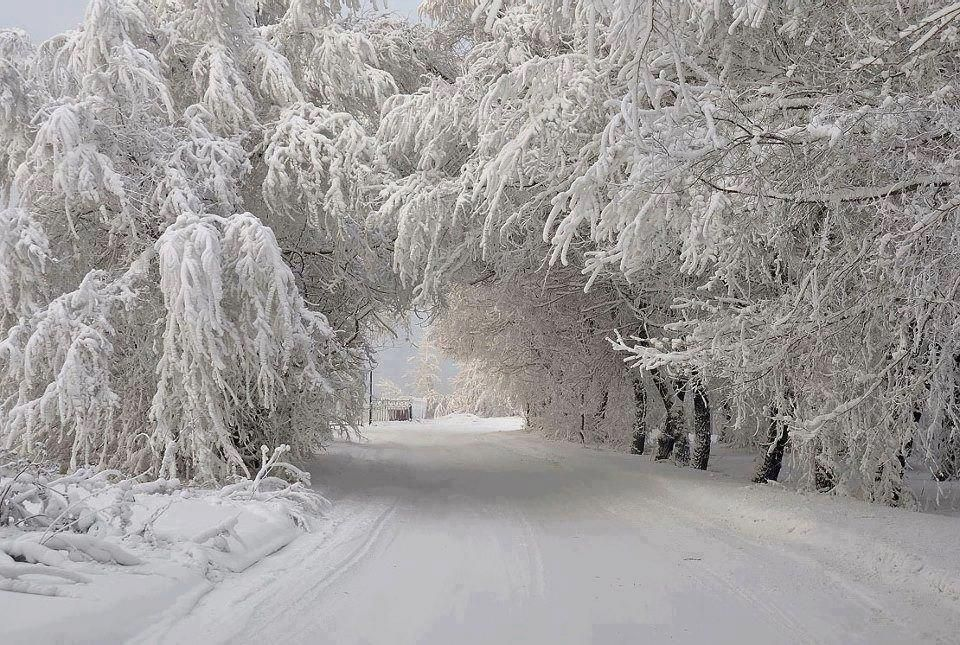 Pin By Janet Hampton On Michigan Beautiful Winter Scenes Winter Scenery Harbor Springs