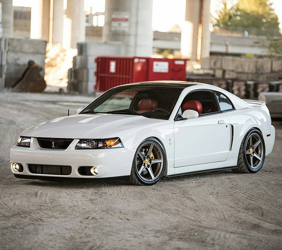 Michaels 2003 mustang cobra