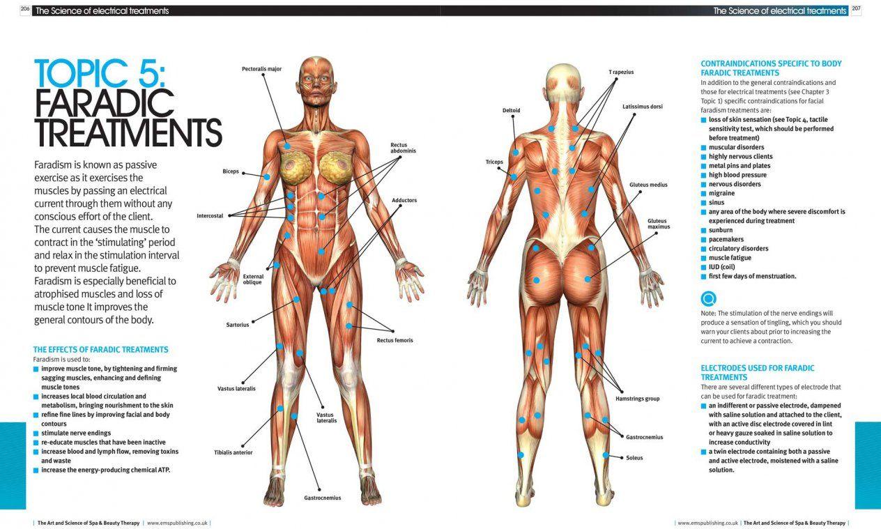 ems 2 electrode placement chart bodybuilding - Google Search | Kick ...