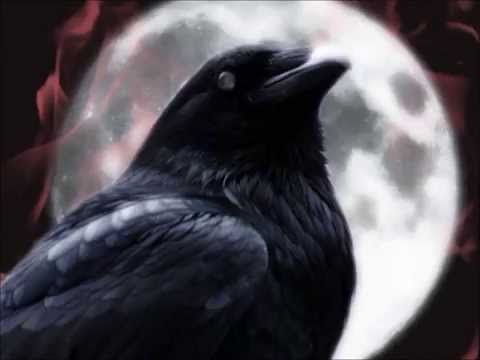 Spooky Books To Read In The Bathtub This Halloween Raven Art