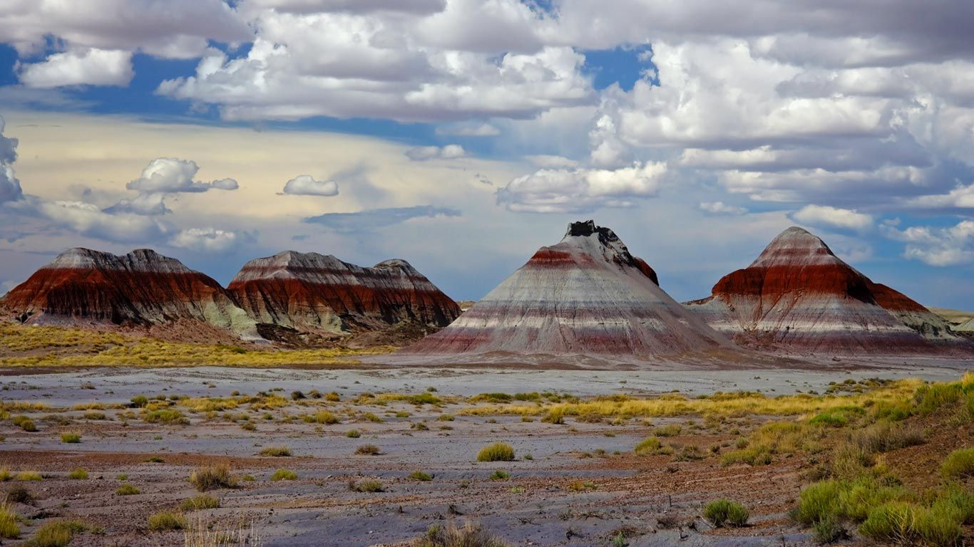 Tes Area Petrified Forest National Park In Arizona