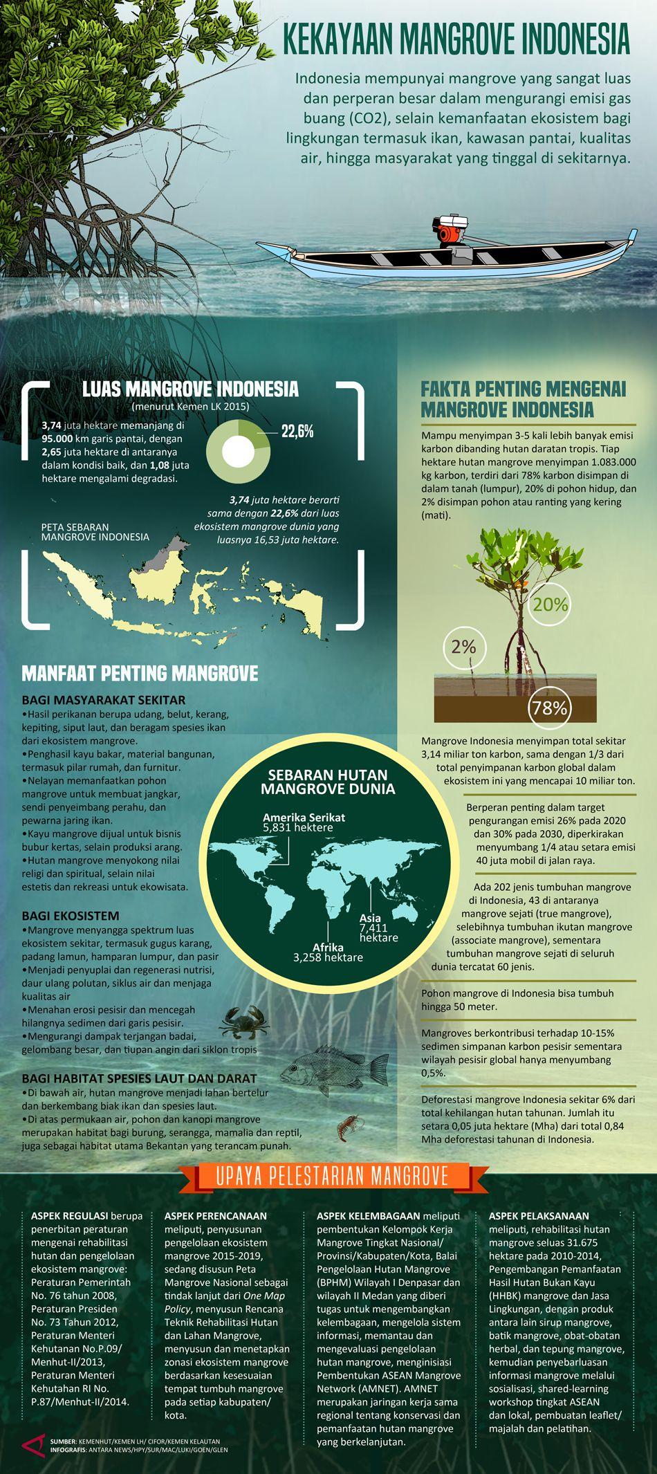 Pengelolaan lingkungan konservasi