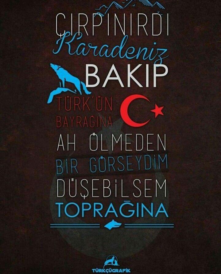 Cirpinirdi Karadeniz Bakip Turk Un Bayragina Vatansevdasi Turkbayragi History Logo Turkler Tarih Alintilar