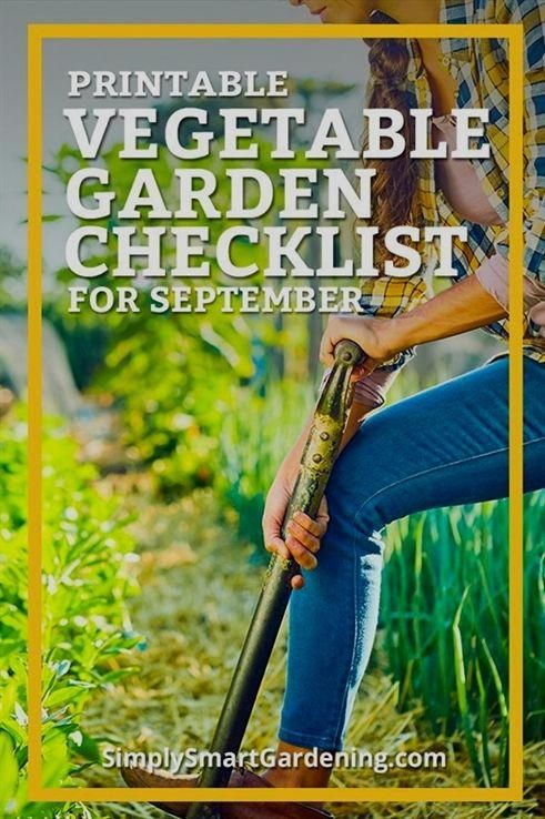 Get your vegetable garden ready for winter this September ...