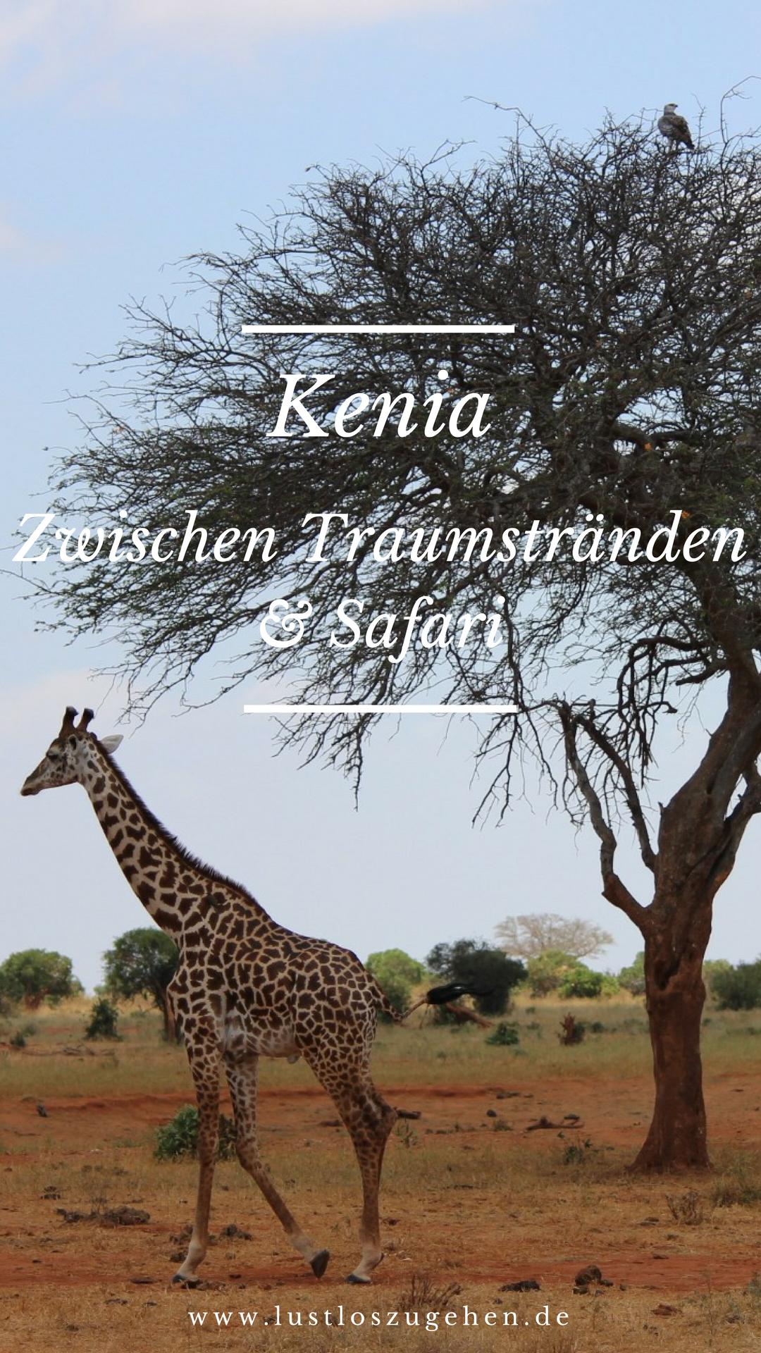 Kenia Safari Im Tsavo Nationalpark Weisse Traumstrande In Diani Beach Afrika Urlaub Afrika Reisen Kenia Urlaub