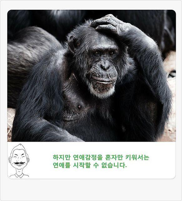 연애톡톡 삼삼남녀 3화_p12 | 출처: web7minutes