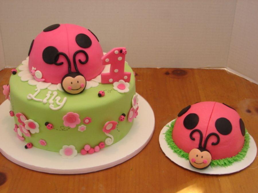Astonishing Ladybug Smash Cake With Images Ladybug Smash Cakes 1St Personalised Birthday Cards Cominlily Jamesorg