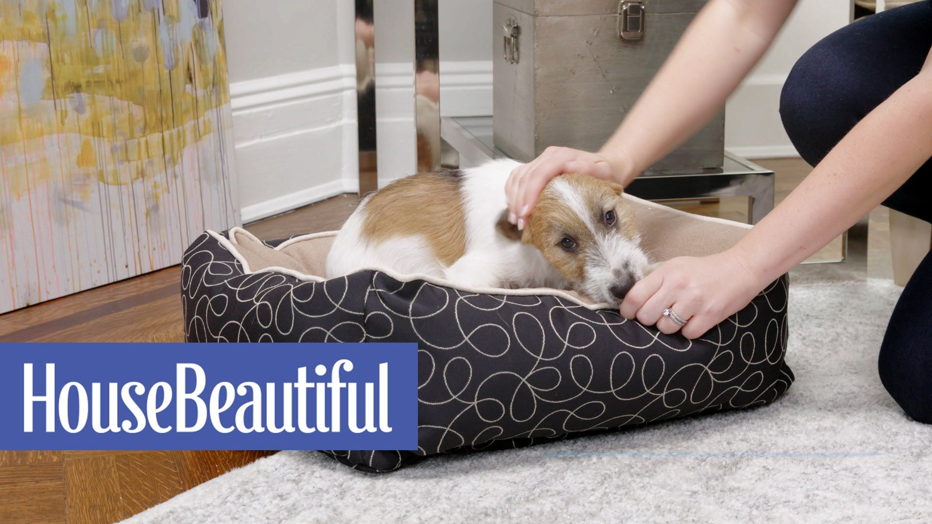 Puppy-Proof Your Style   House Beautiful + Crypton