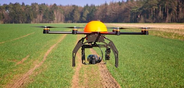 Drones e a natureza