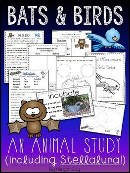 Bats and Birds Unit This unit includes instruction and activities for a comparative study of bats and birds! Table of Contents: *KWL Charts *Bird Life Cycle Activities *Bat Life Cycle Activity *Informational Reading Passage *Bat or Bird Sort *Vocabulary Cards *Word Collector