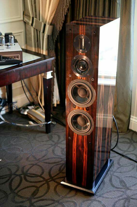 ProAc Carbon Pro 6 speaker