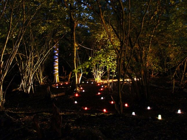 Wise Wedding Venue Kent Hire A Tent And Get Married In Forest With Tree House