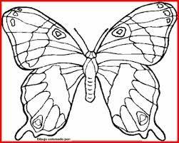 Resultado De Imagen Para Dibujos Faciles De Mariposas Para Dibujar