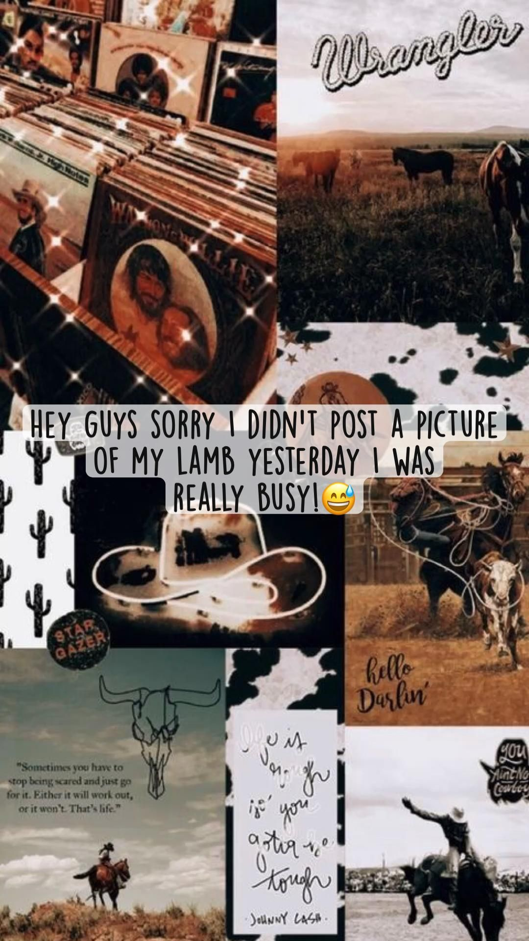 Hey guys sorry I didn't post a picture  of my lamb yesterday I was  really busy!😅
