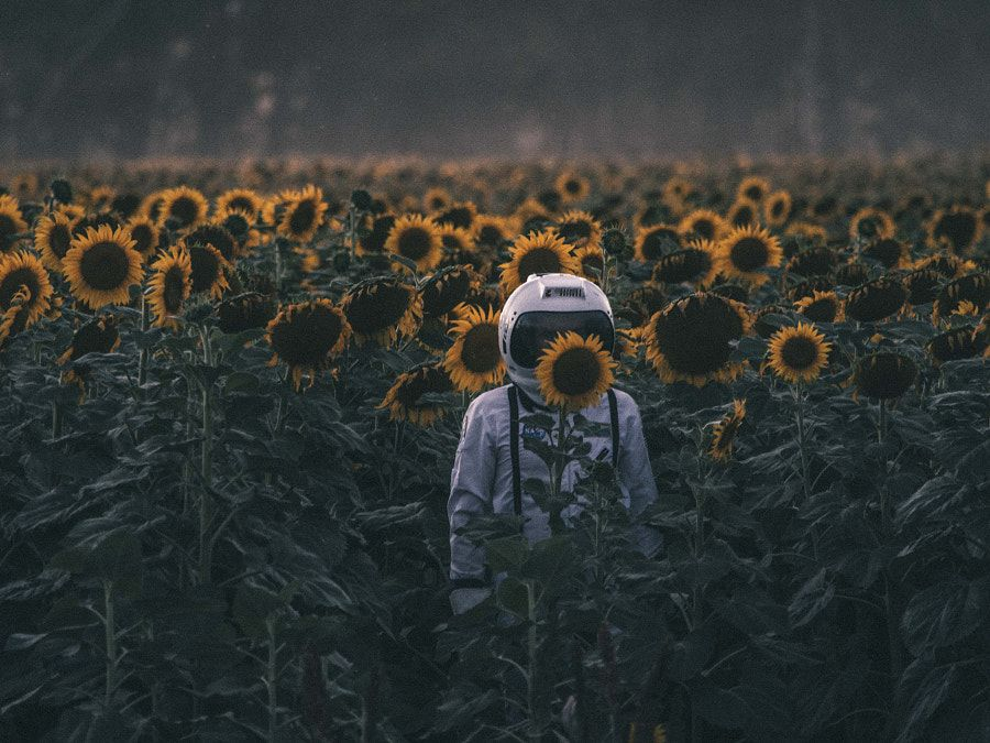 icognito by Denise Kwong on 500px.com
