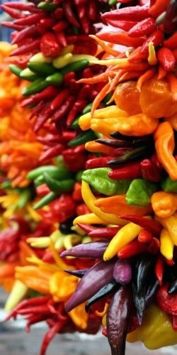 Spicy and thermally hot foods can trigger rosacea Milder spices can