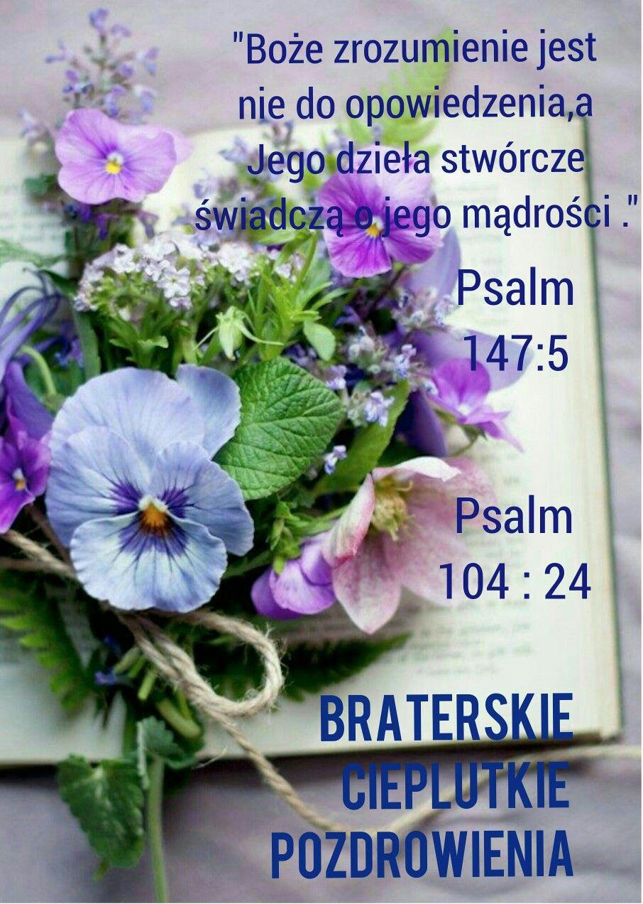 Pin Von Tm Auf Biblia