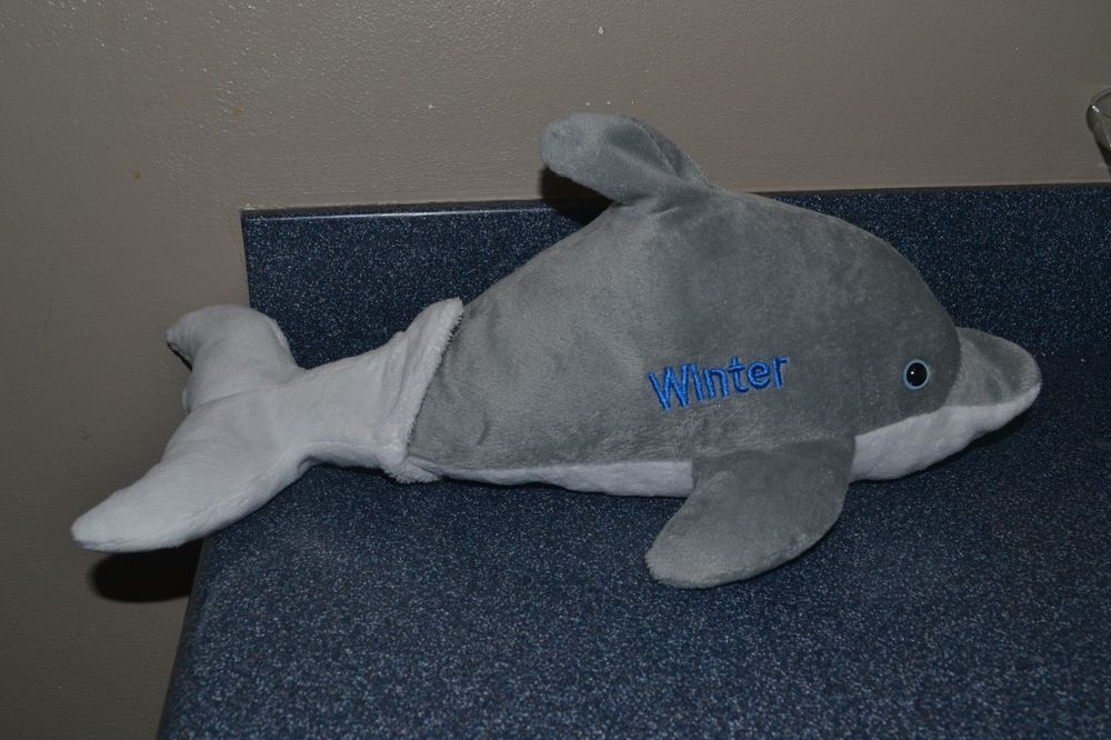 Winter Dolphin Plush 16 Plush Velcro Removable Tail Clearwater