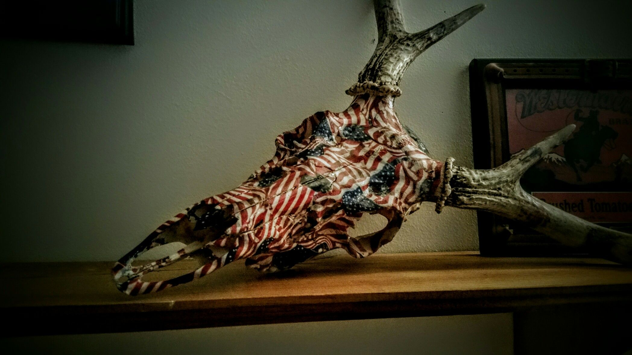 Hydrographics hydrodipped deer skull