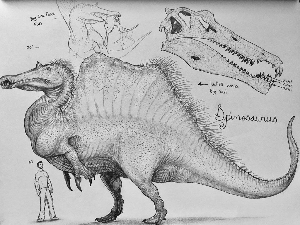 Rejected Spino by artisticallyautistic | Mesozoic