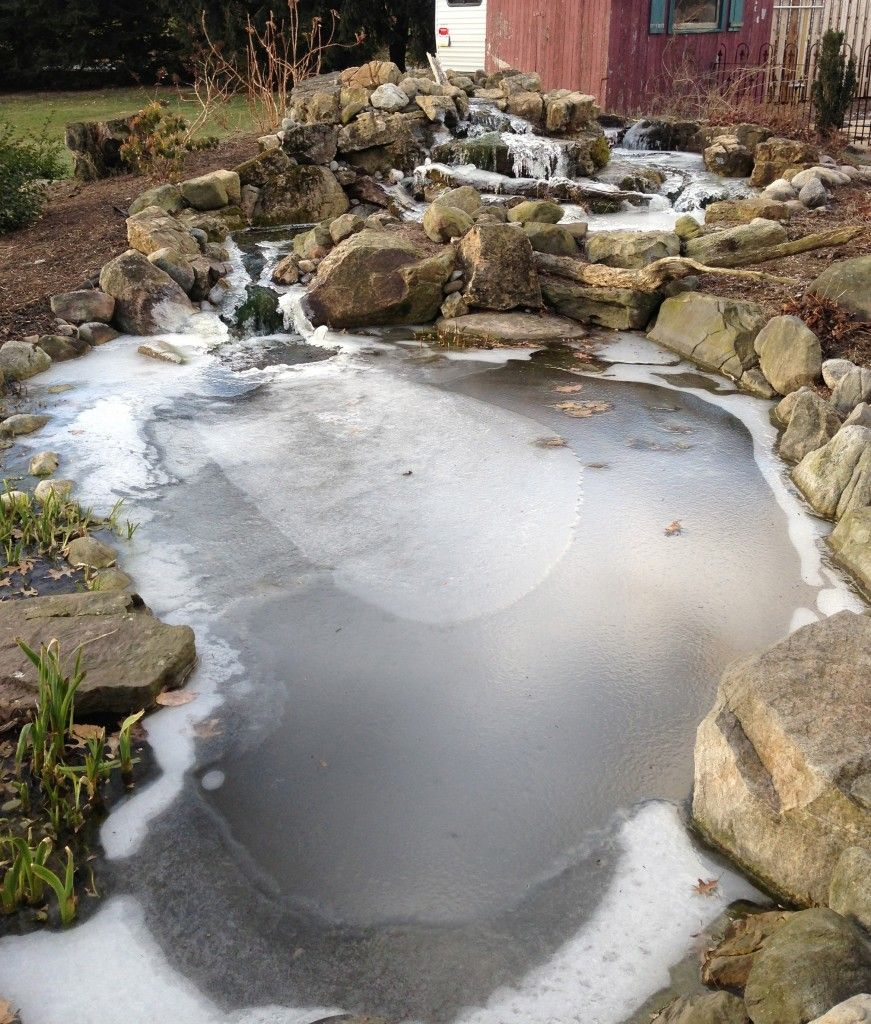 Preparing your pond for cooler temperatures ponds for Koi pond temperature