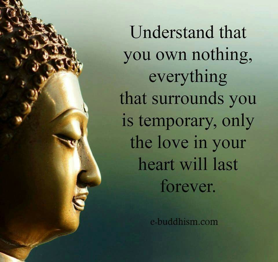 Understand That You Own Nothing Everything That Surrounds You Is