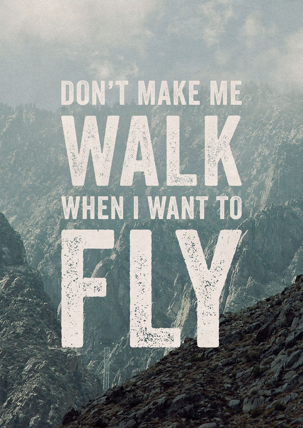 Dont make me walk when i want to fly by oliver shilling