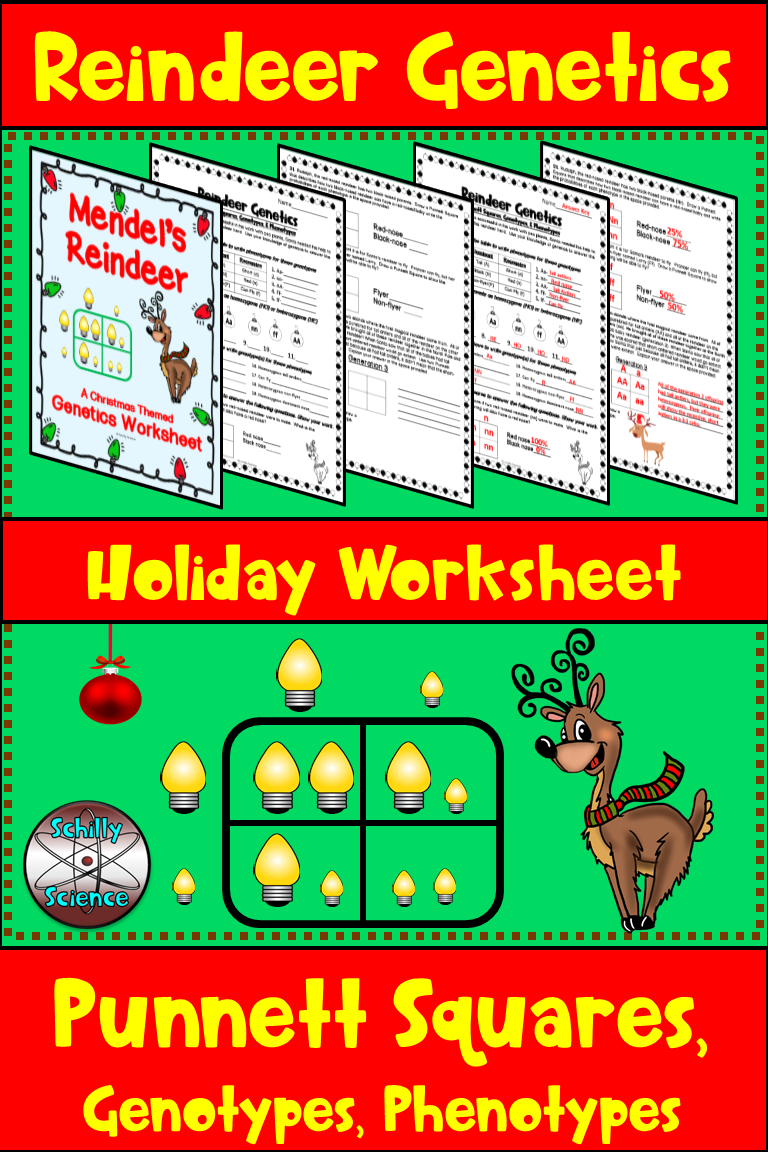 Christmas Square Worksheet Reindeer