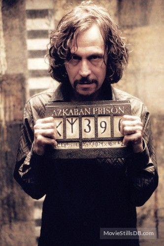 Harry Potter And The Prisoner Of Azkaban Gary Oldman As Sirius Black 2004 Harry Potter Sirius Harry Potter Characters Harry Potter Film