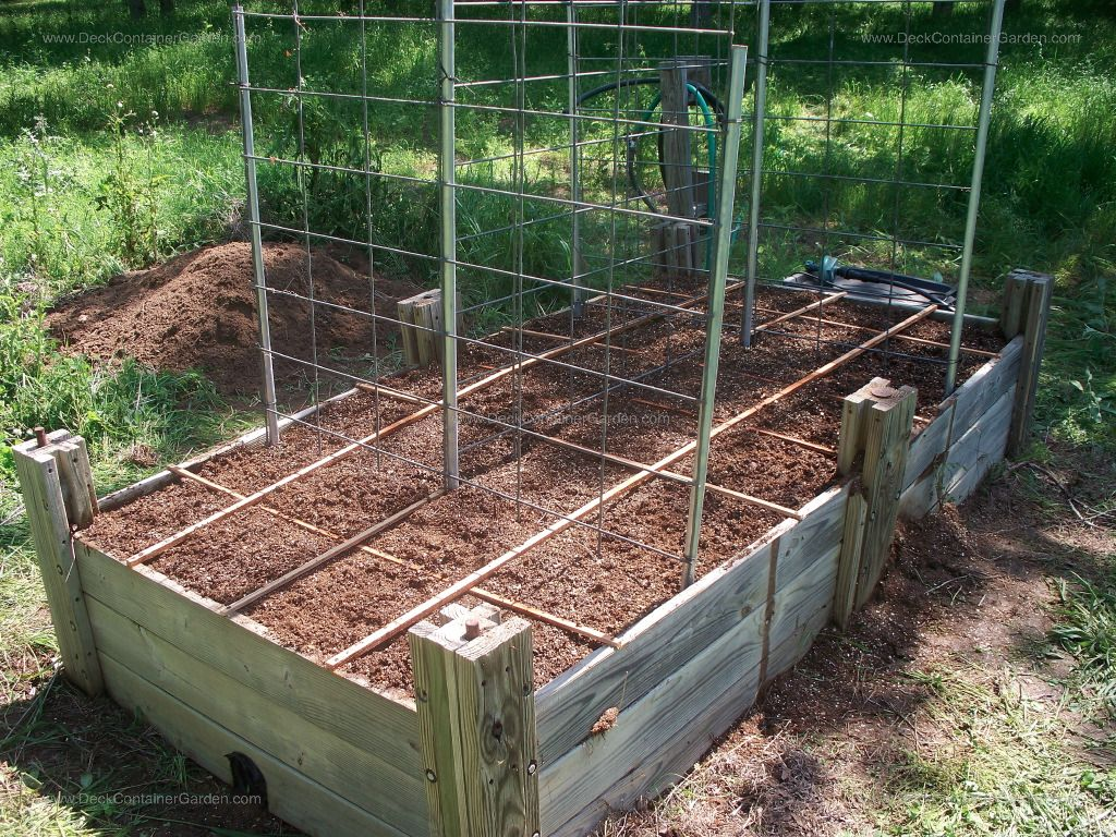 Image detail for Raised Garden Beds and Square Foot Gardening