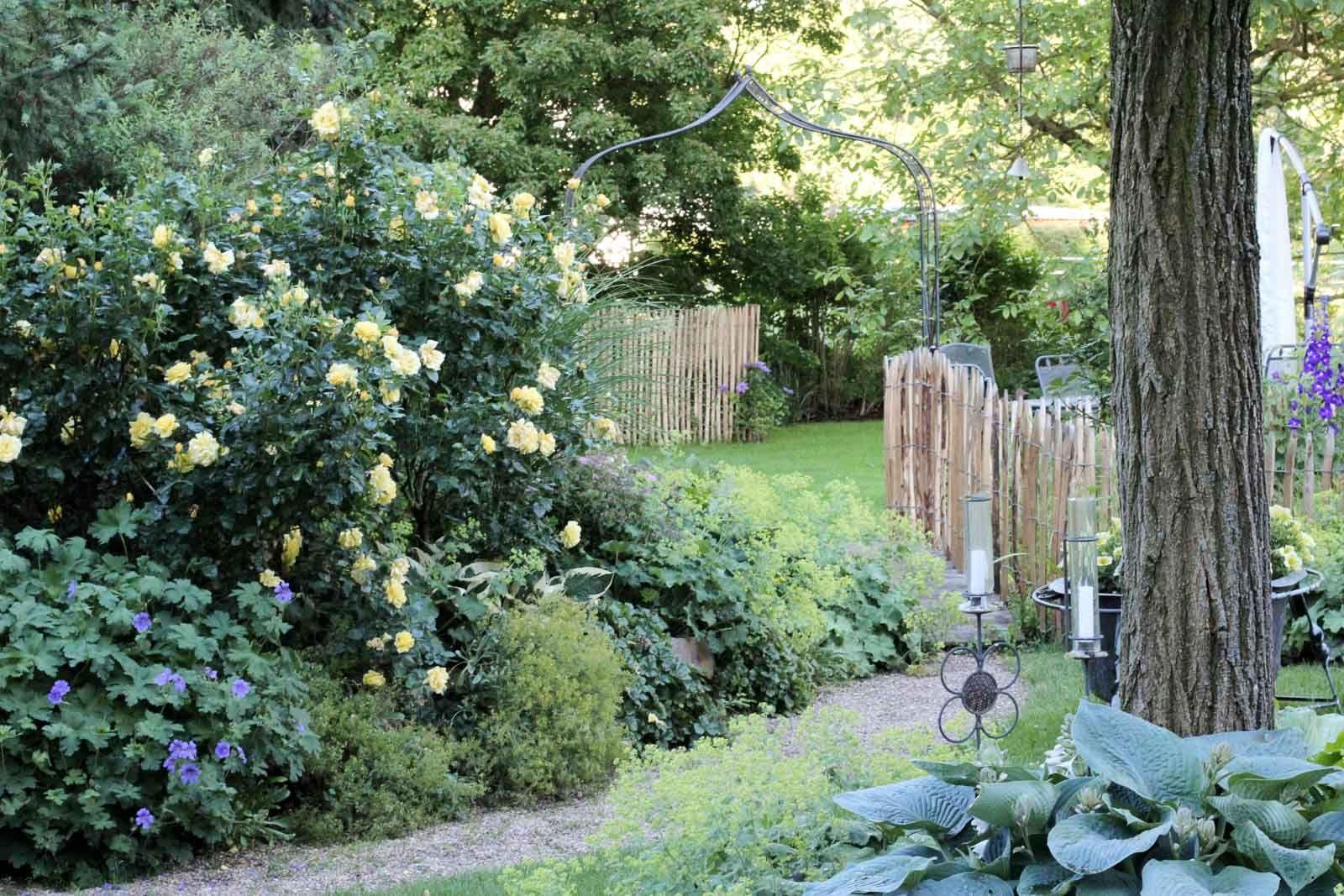 Traumgarten Ein Hessisches Kleinod Garten Fraulein Der Garten Blog Traumgarten Garten Englischer Garten