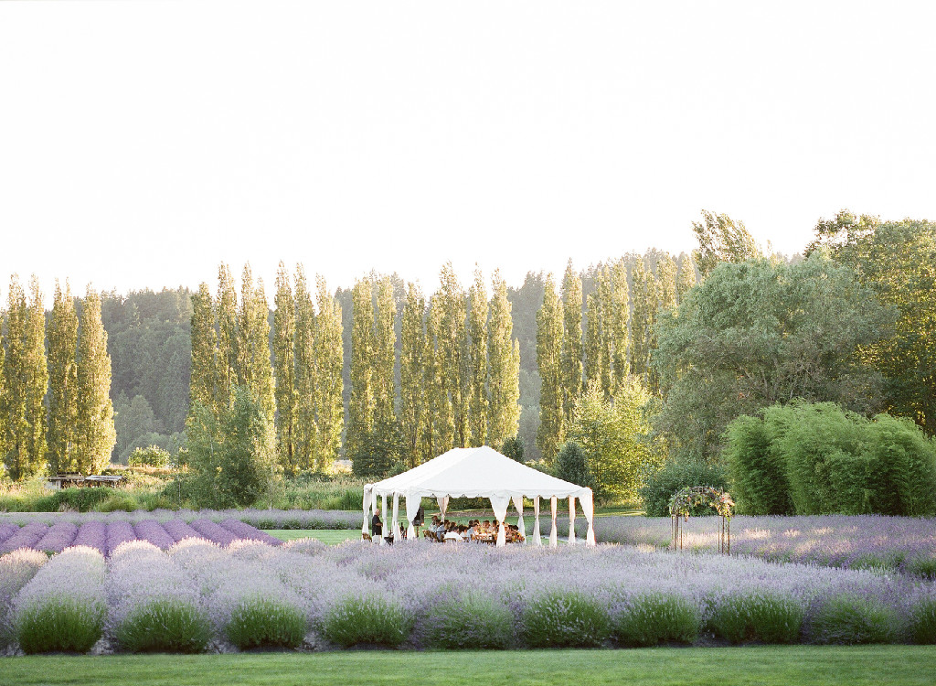 Outdoor Wedding Venues Washington State: Woodenville Lavender Farm, Seattle Washington Wedding