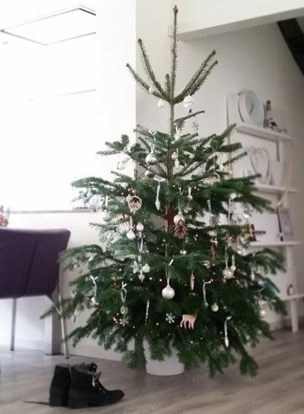 kerstboom - xmas - tree