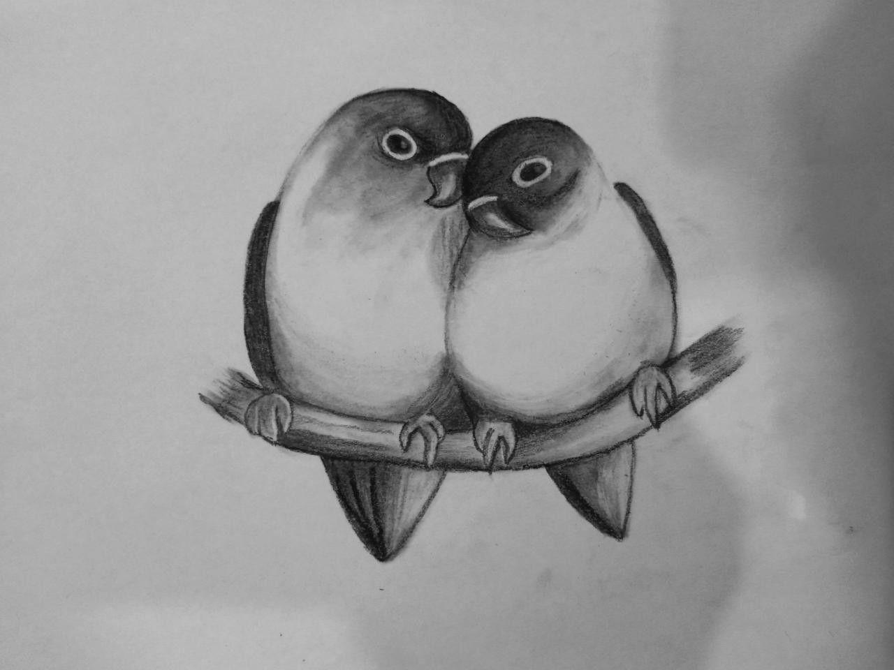Love Birds Drawing Love Birds Drawing Drawing Pictures Of Birds Bird Drawings