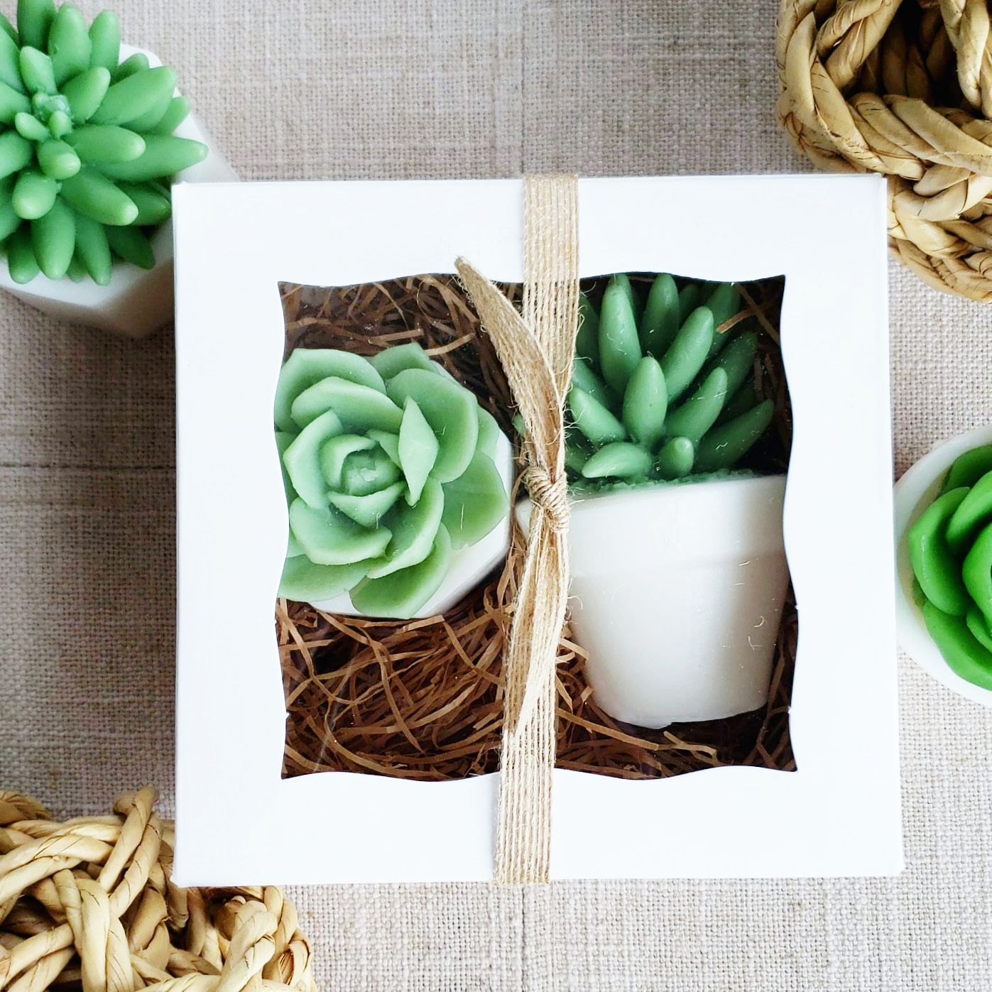 Farmhouse Succulent Soap Gift Set Birthday Gifts For Best Friend Handmade Soap Gifts Friend Birthday Gifts