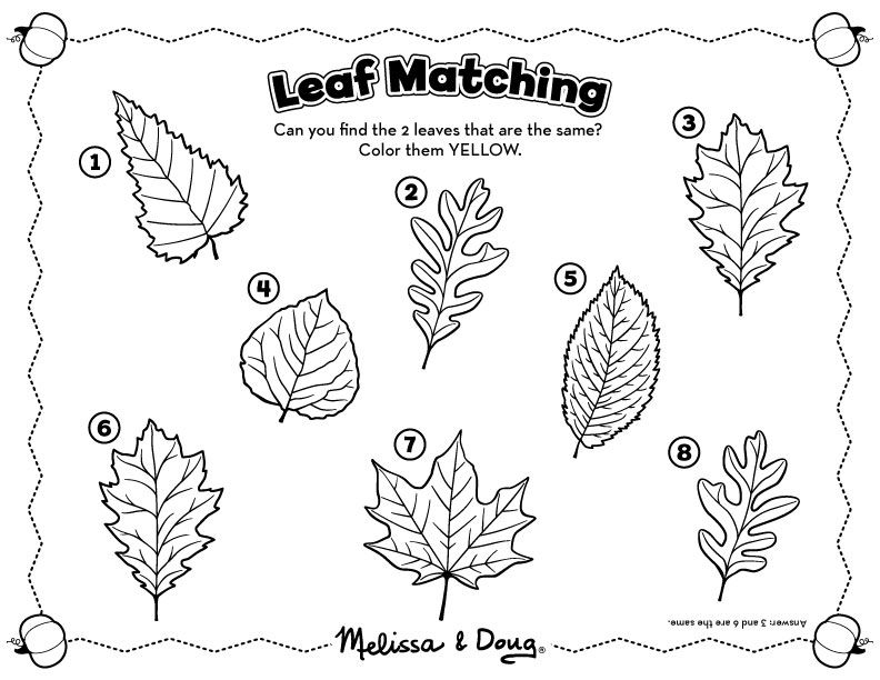 Fall Matching Activity For Kids