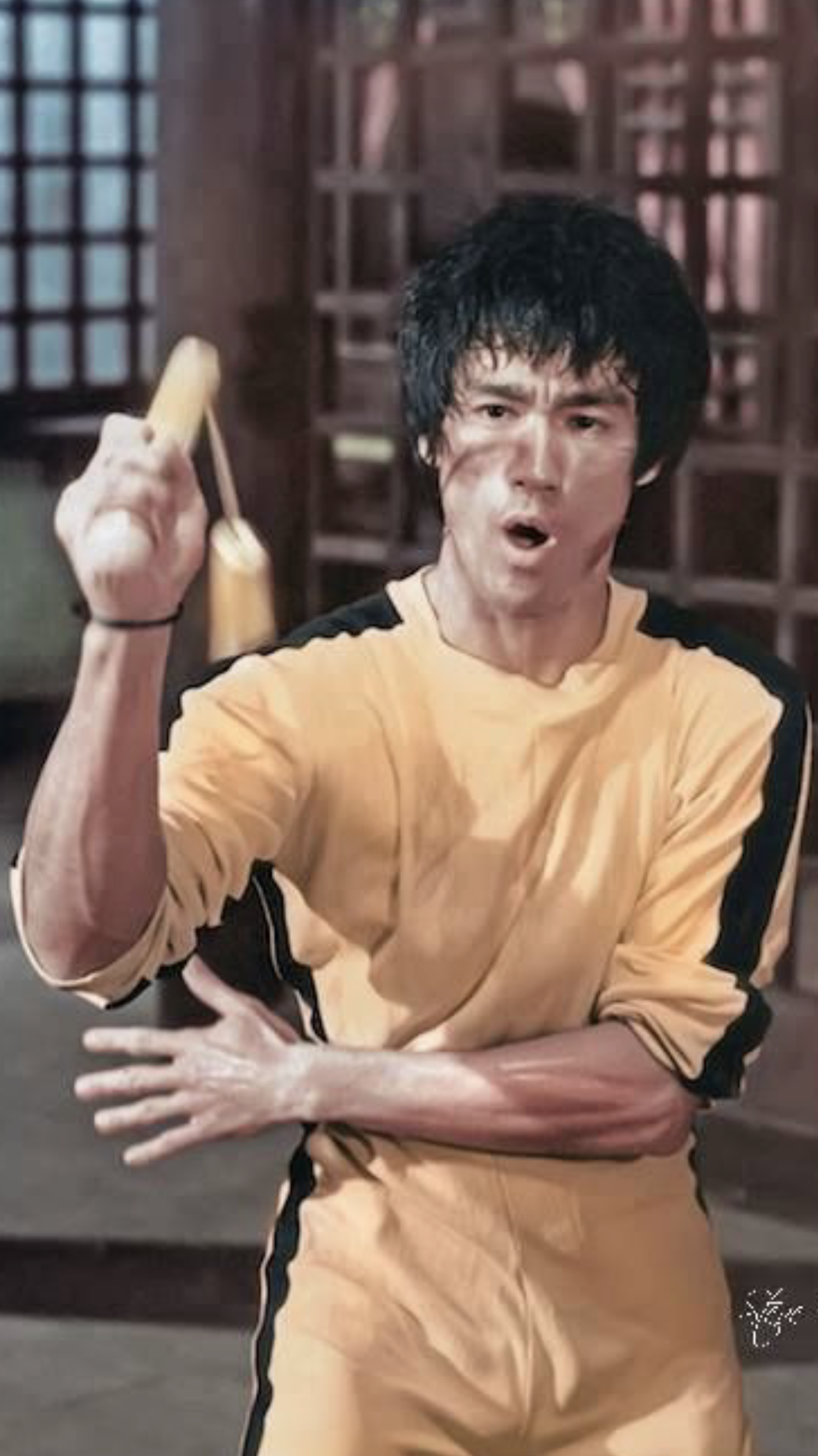 Pin by Nel Djny on Game of death (1972) | Game of death ...