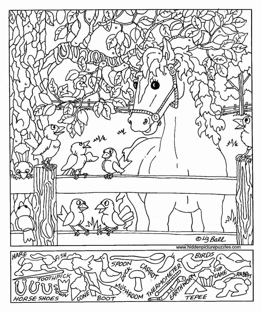 A Horse And Birds Hidden Picture Worksheet