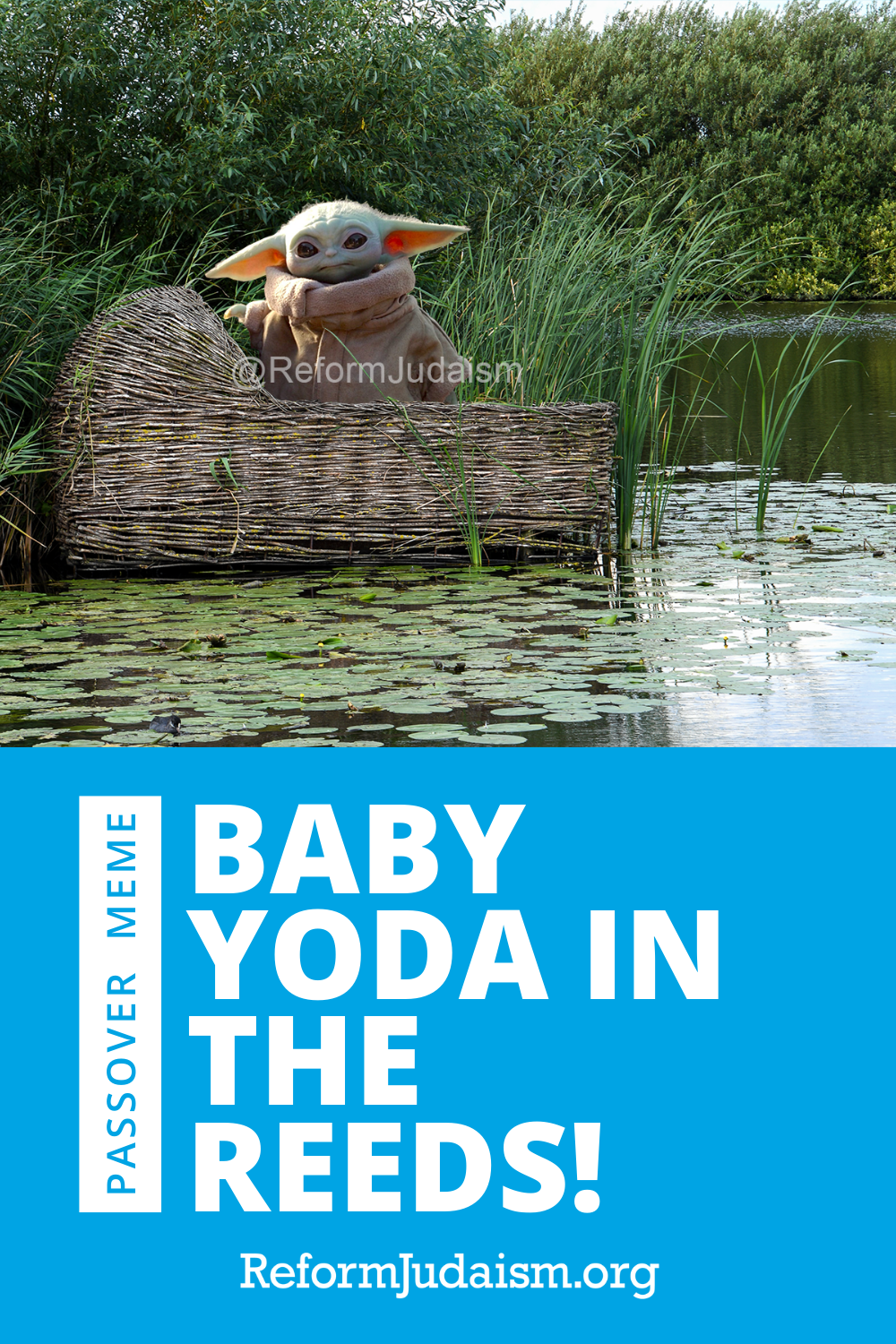 The Baby Yoda / Passover meme you didn't know you needed