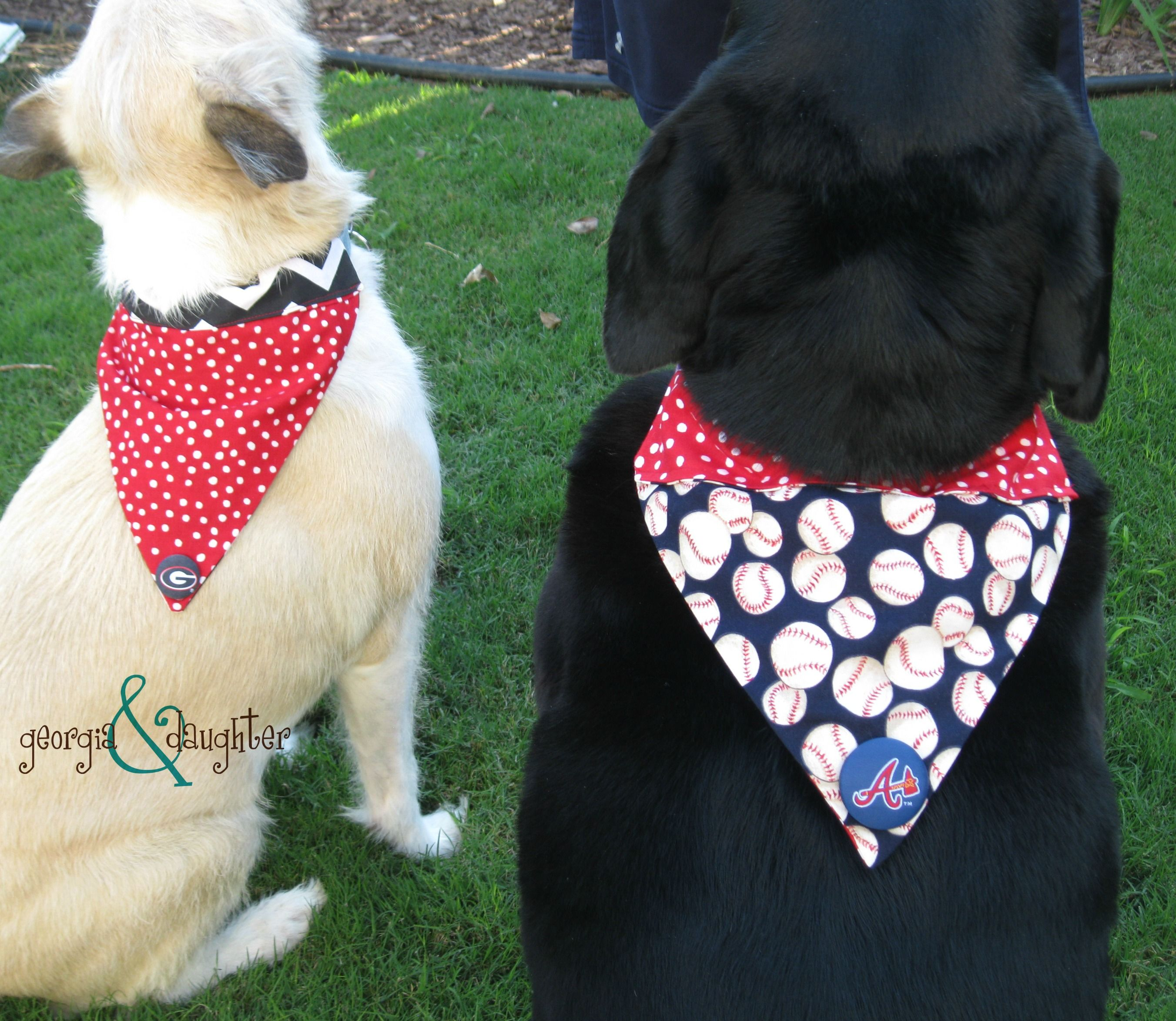 Georgia daughter diy dog collar bound bandanas adulting georgia daughter diy dog collar bound bandanas jeuxipadfo Gallery