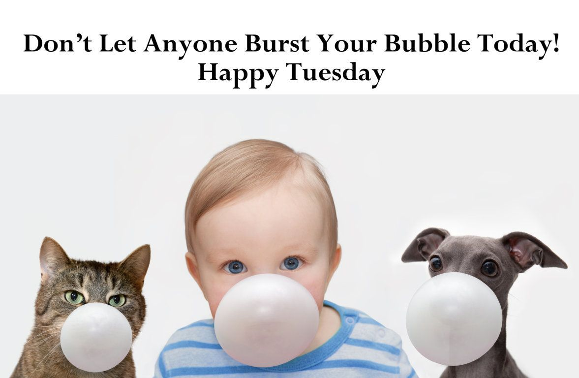 Don't let anyone burst your bubble today! Happy Tuesday. pinned by www.computerfixx.biz