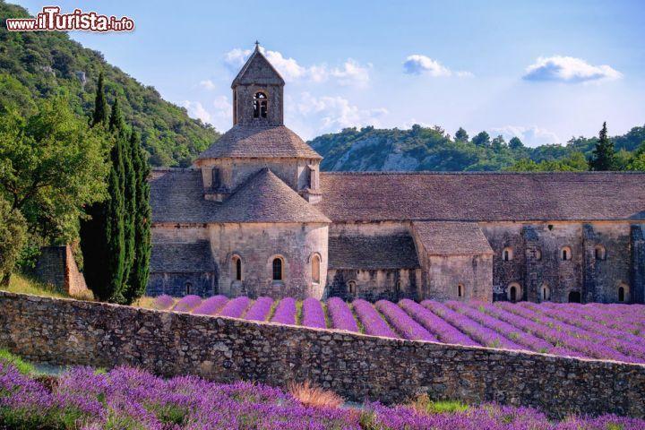 FRANCIA Provenza. Abbazia Cistercense di Gordes