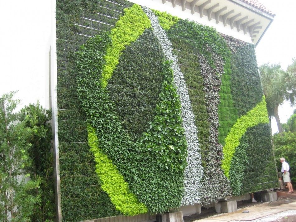 19 best Green Wall images on Pinterest Vertical gardens Living